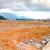 Muan bán nhà đất tại đà nẵng